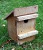 KMG Dormouse nest box